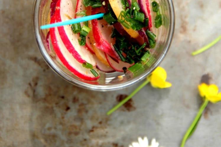 Verrines apéritives de radis multicolores