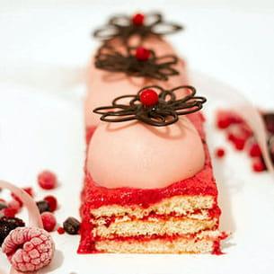 gâteau-bûche rose fruits rouges & chocolat blanc