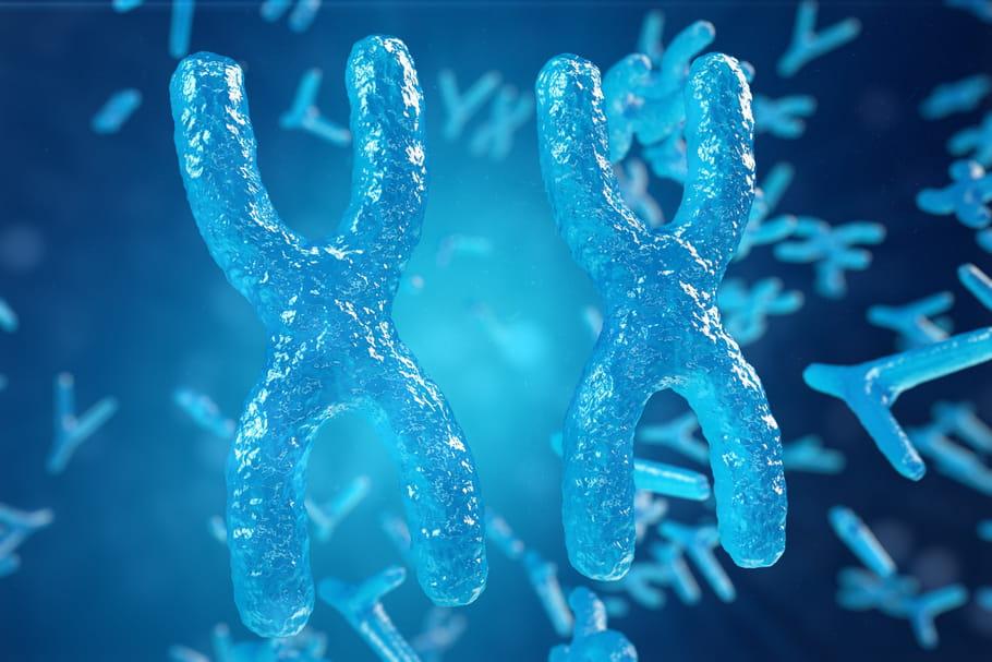 Syndrome triple X: symptômes, types d'anomalies, traitement