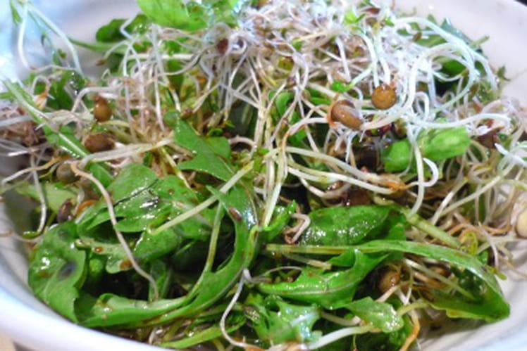 Salade de graines germées au balsamique