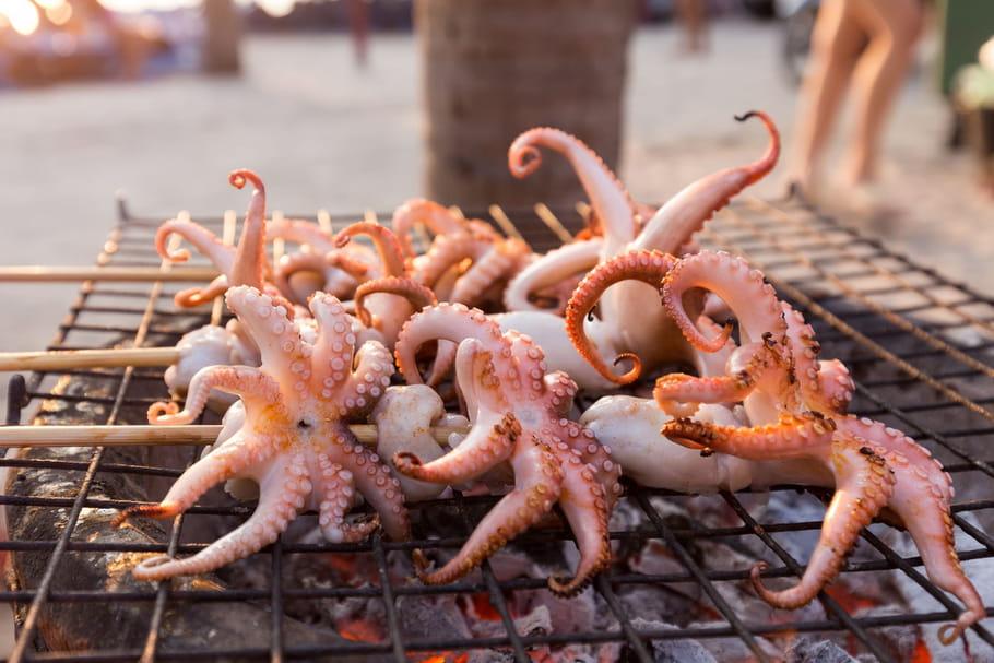 Tout sur le calamar le choisir le cuisiner le conserver - Comment cuisiner les calamars ...