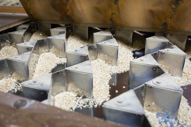 Le triage du riz par vibrations