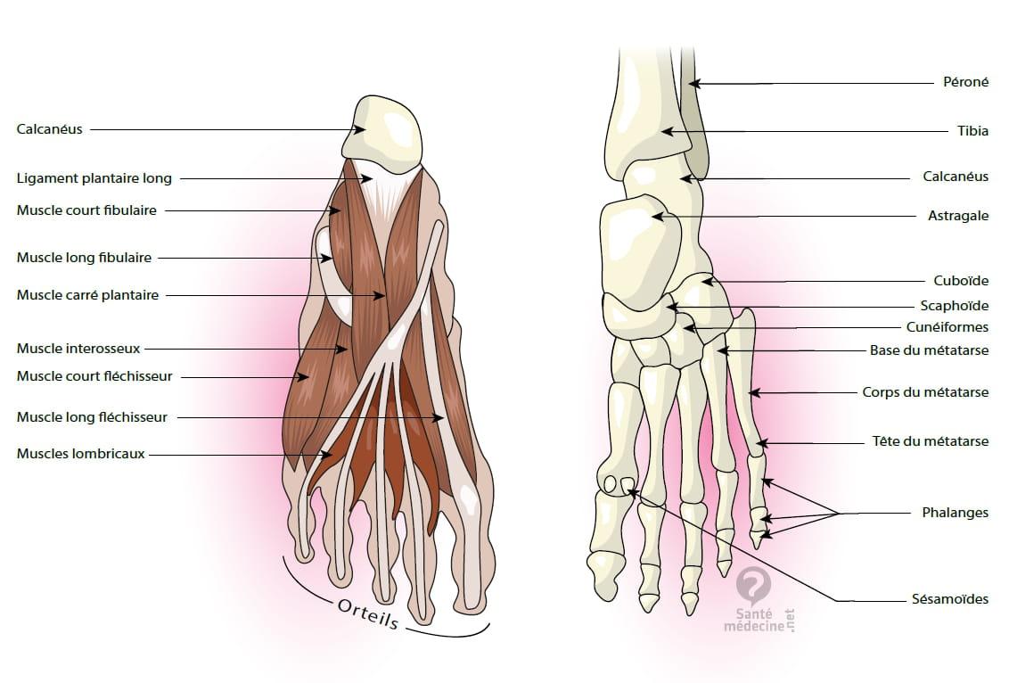 mycose des pied traitement
