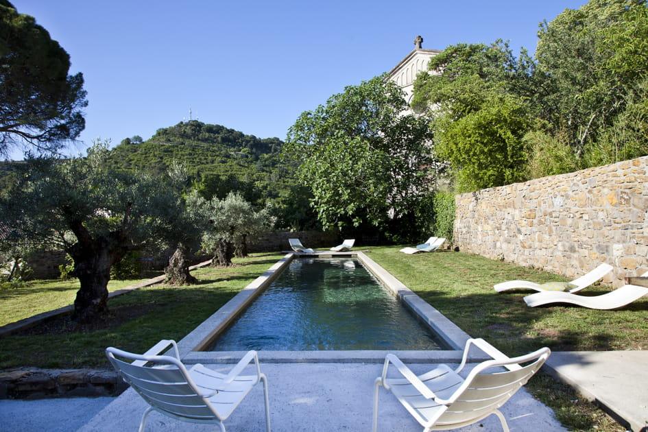 Des oliviers le long de la piscine