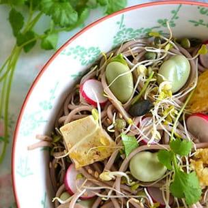 salade printanière de nouilles soba aux graines germées, fèves et tofu sauté,