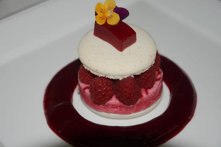 Macaron à la vanille & meringue glacée aux framboises