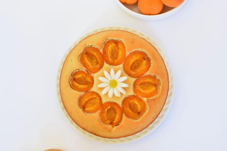 Financier xxl aux abricots et à la fleur d'oranger sans gluten ni lactose