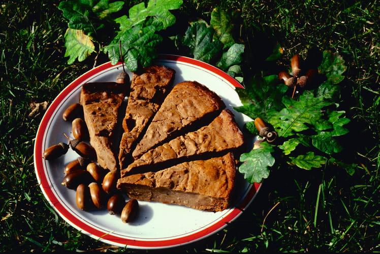 Gâteau aux glands