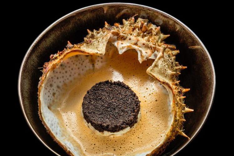 Soupe d'araignée de mer de Jésus