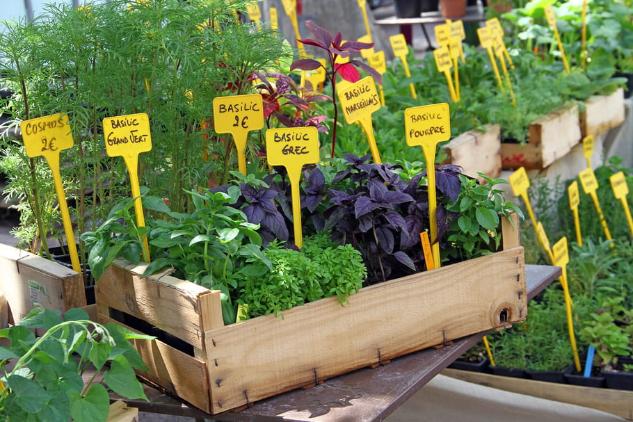 Jardineries et fleuristes sont-ils ouverts pendant le confinement 2021?