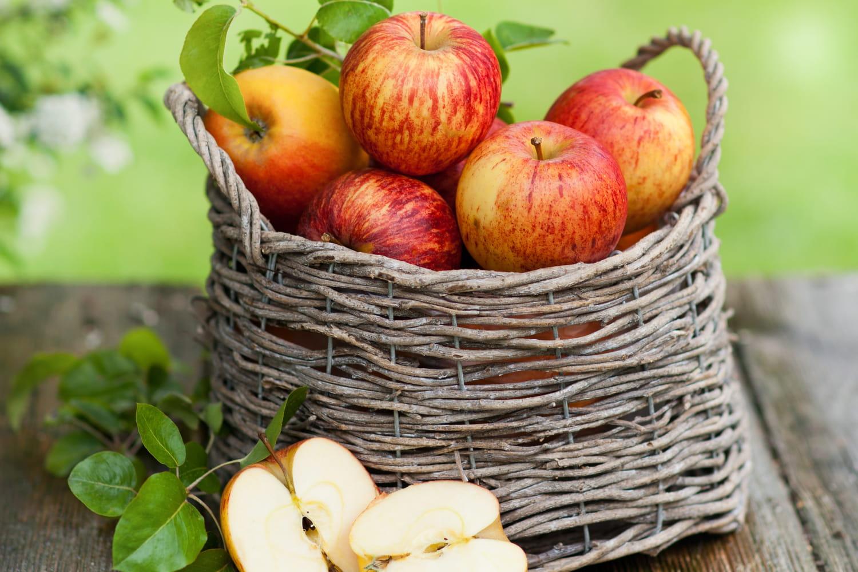 Légumes et fruits d'octobre
