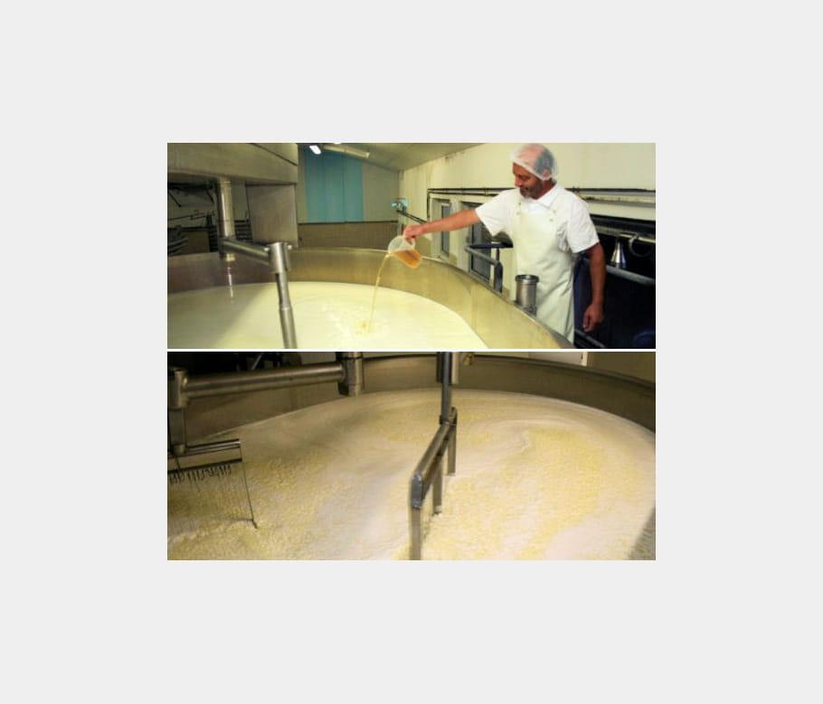 Première étape : transformer le lait en caillé