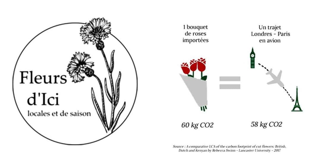 fleurs-locales-et-de-saison