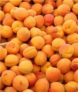 l'abricot est riche en potassium.