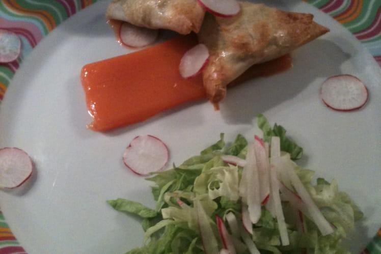 Samossa de légumes sur gelée de carotte