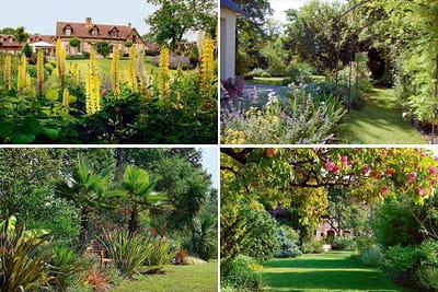 jardiner sans arroser c 39 est possible. Black Bedroom Furniture Sets. Home Design Ideas