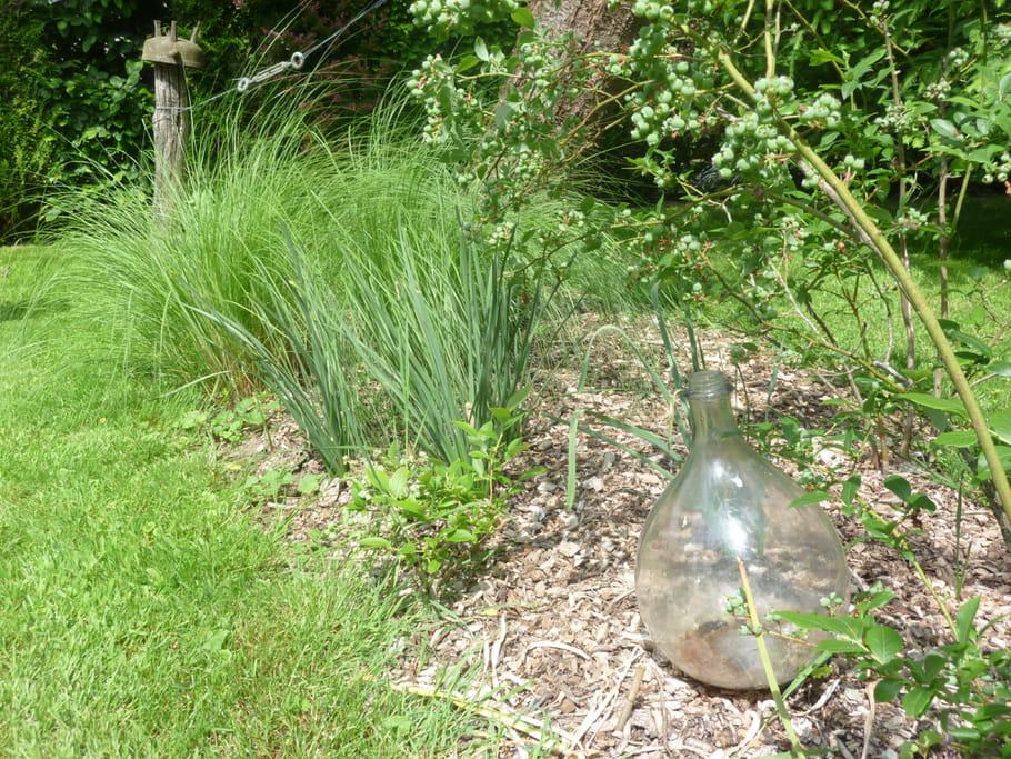 Un entretien respectueux de la nature le jardin pour for Tous pour le jardin