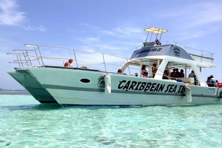 Excursion de rêve en bateau