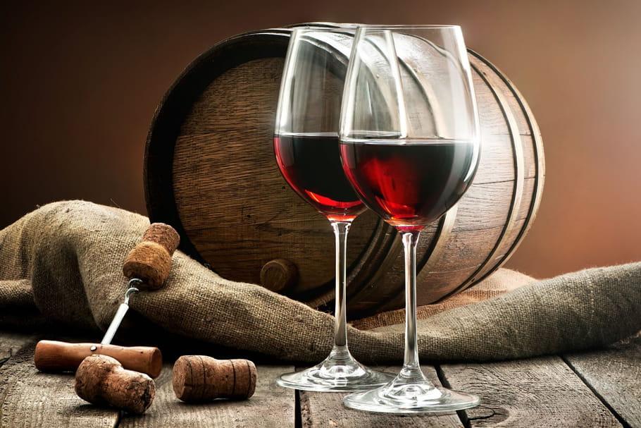 Choisissez le vin idéal pour votre repas avec Winespace