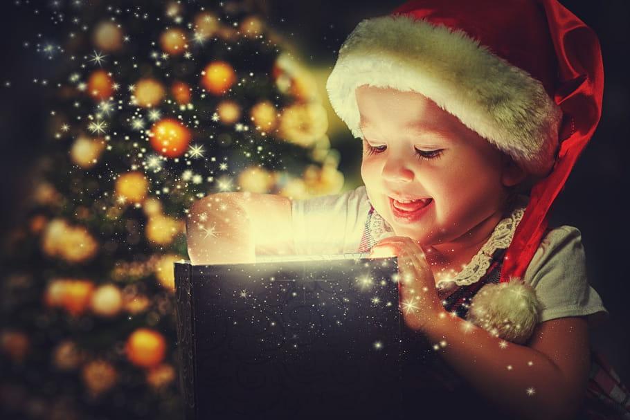 La hotte de Noël: 57jouets à gagner