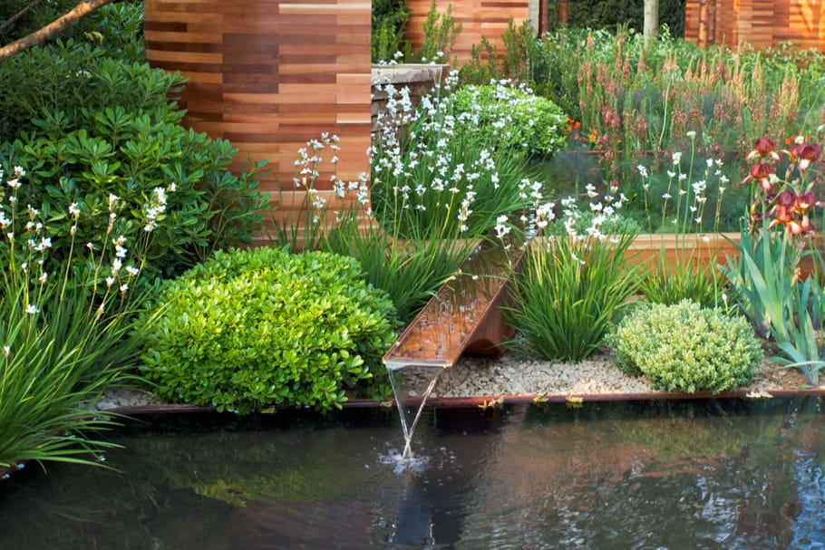 Comment faire un jardin d'eau?