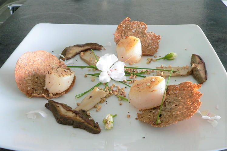 Assiette de noix de Saint-Jacques et cèpes sur galettes de sarrasin