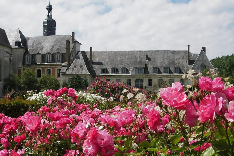 Elodie Gossuin et Jean-Pierre Pernaut séduits par une rose