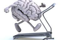 certains exercices basiques permettent d'améliorer les performances du cerveau.