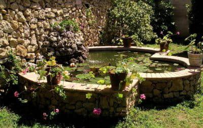 pensez à ramasser les feuilles qui occupent la surface du bassin.