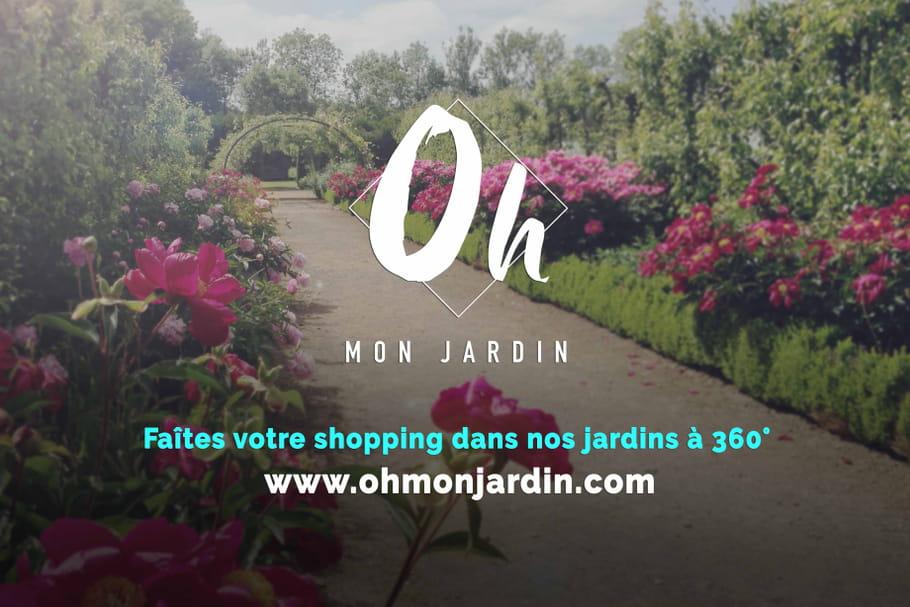 Oh Mon Jardin, une nouvelle façon d'acheter ses plantes