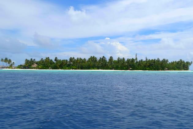Une île / un paradis
