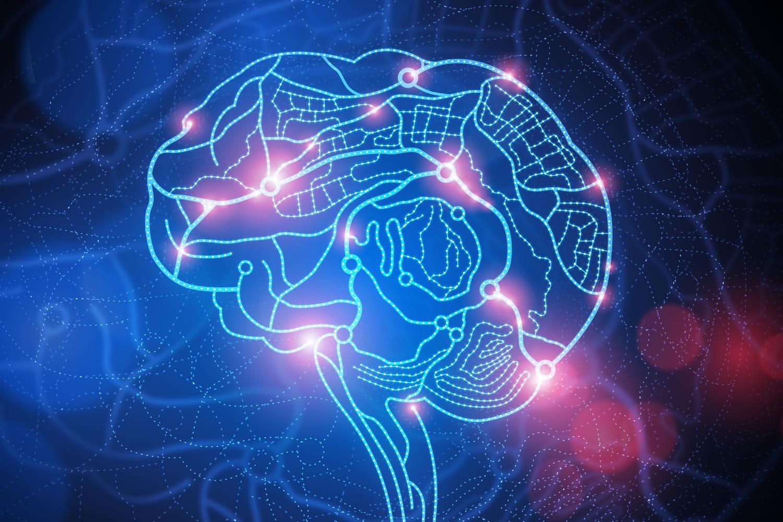 Des ultrasons pour aider au traitement des tumeurs cérébrales