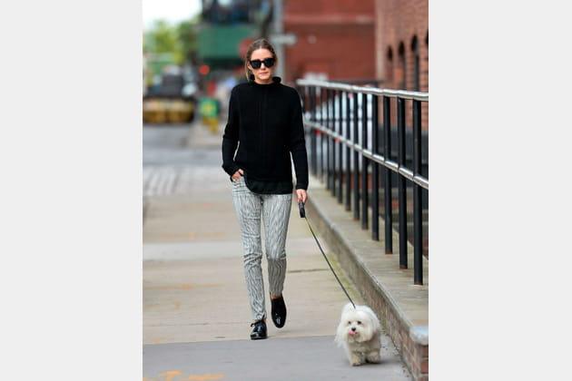 Olivia Palermo et son petit chien à New York