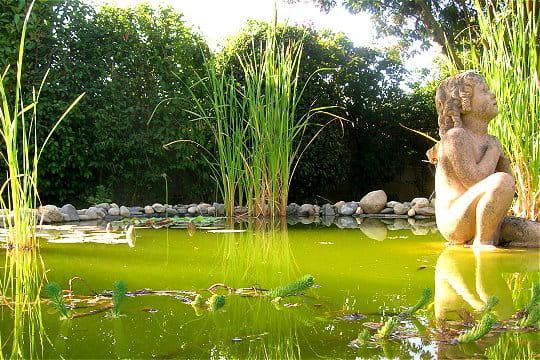 Bassin inspiré par Monet