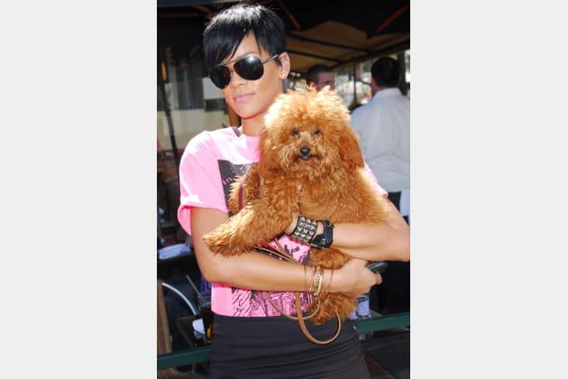 Rihanna porte son chien comme un bébé