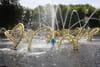 Jardins de Versailles: le bosquet du Théâtre d'Eau ouvre ses portes