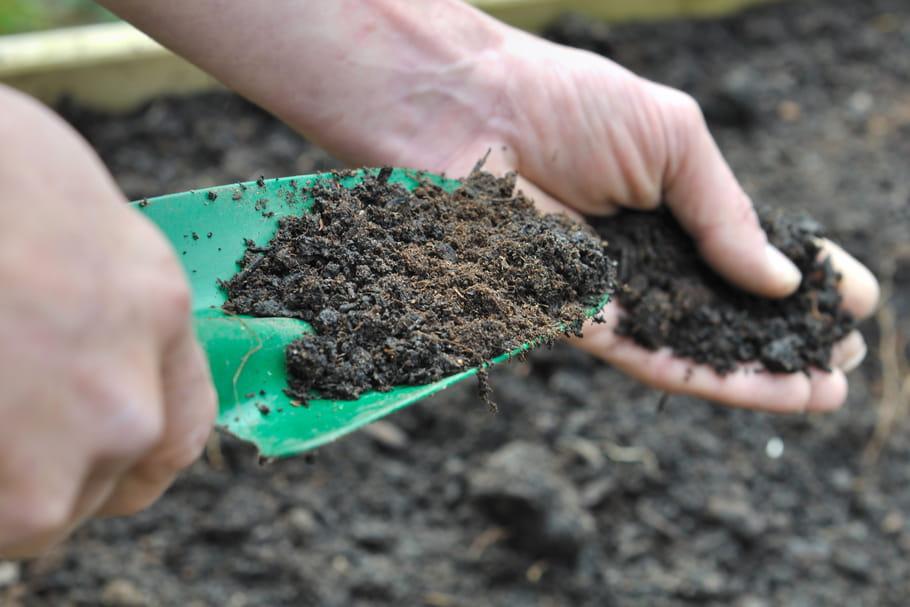 Comment redonner vie au sol de son jardin?