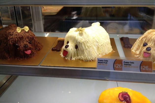 Des pâtisseries qui ont du chien