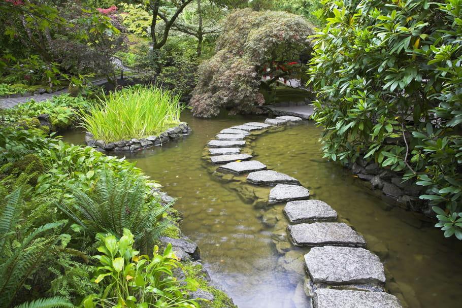 Comment cr er un jardin japonais - Plantes jardin japonais ...