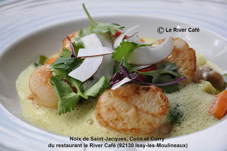 Noix de Saint-Jacques, coco et curry