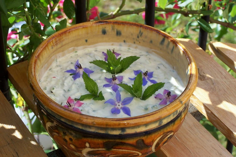 Tzatziki : la meilleure recette