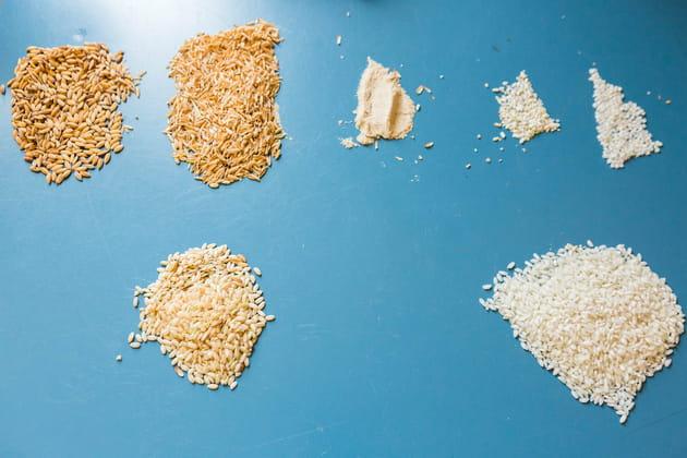 Le riz dans tous ses états