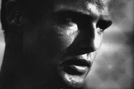 Marlon Brando, l'homme sauvage