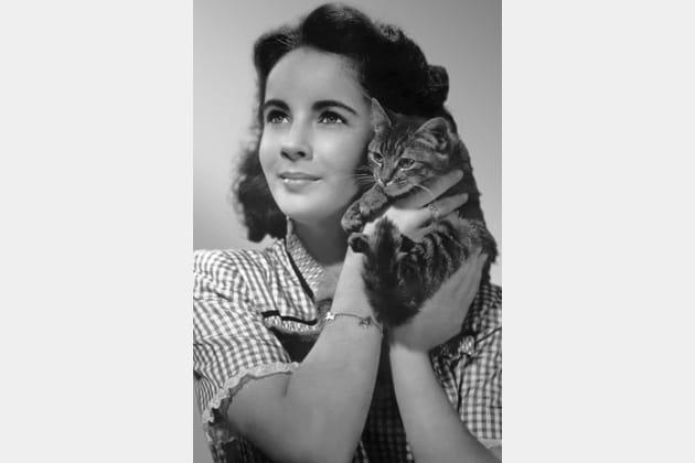 Elizabeth Taylor et son chat dans les années 1940