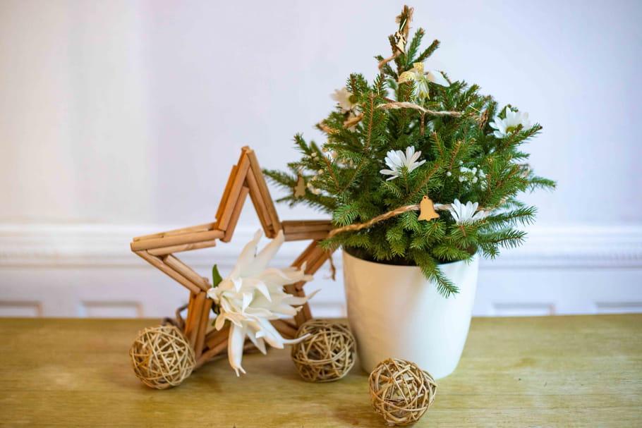 Acheter son sapin de Noël sur Internet