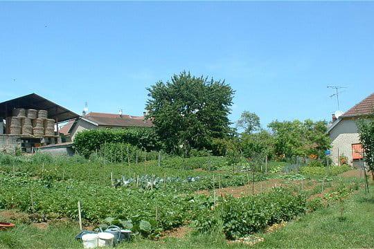 Un jardin sauvage et luxuriant dans la campagne jurassienne for Alexandre jardin le petit sauvage