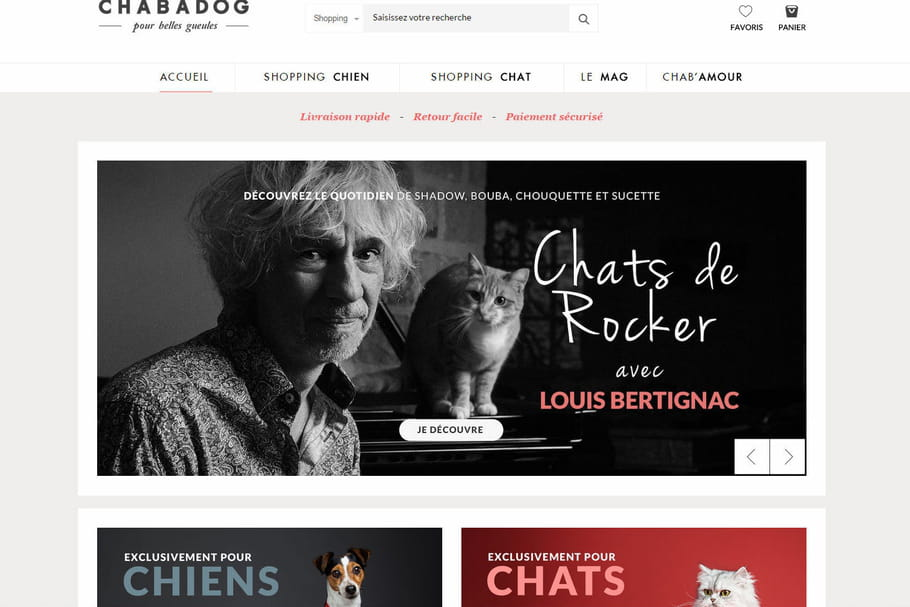 Chabadog : le site dédié aux chiens et chats