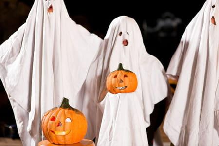 Fabulous Halloween : comment le déguiser ? RI52