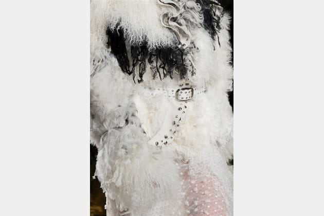Rodarte (Close Up) - photo 6