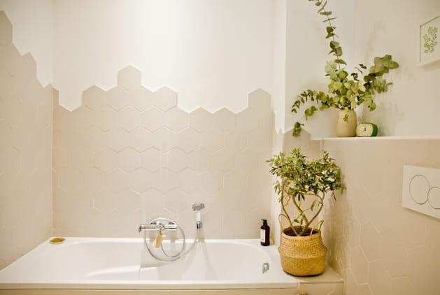 Des arbustes dans la salle de bains